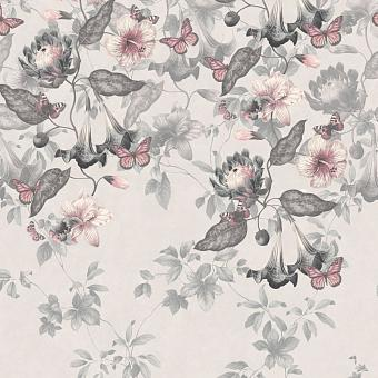 0291ASNIGHT, Archive Trails II, Little Greene